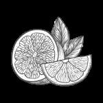 sorbet citron glacerie madame monsieur